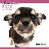 【2020年版・壁掛け】THE DOG チワワ 403310