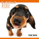 【2020年版・壁掛け】THE DOG ダックスフンド 403311