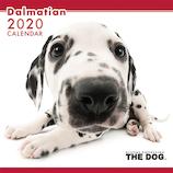 【2020年版・壁掛け】THE DOG ダルメシアン 403312