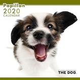 【2020年版・壁掛け】THE DOG パピヨン 403322