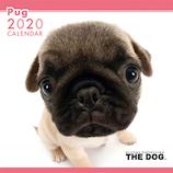 【2020年版・壁掛け】THE DOG パグ 403326