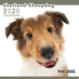 【2020年版・壁掛け】THE DOG シェルティー 403327
