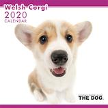 【2020年版・壁掛け】THE DOG ウェルシュコーギー 403331