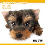 【2020年版・壁掛け】THE DOG ヨークシャーテリア 403333
