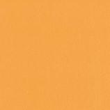 インディゴ カラーティッシュ PW444 オレンジ