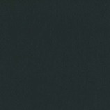 インディゴ カラーティッシュ PW449 ブラック