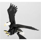 ペーパーパズル 白頭鷲 カラー