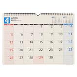 【2020年版・壁掛け】 4月始まり NOLTYカレンダー壁掛け36 U136