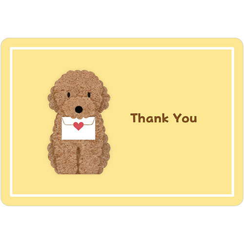 サンリオ トイプードル感謝 953300│カード・ポストカード メッセージカード