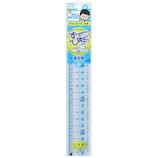 レイメイ藤井 先生おすすめ直定規 18cm APJ136│定規・コンパス 定規