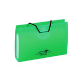 リヒトラブ ポイントカードホルダー A-5002-6 黄緑