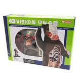 青島文化教材社 FAME MASTER 4D VISION 動物解剖モデル 立体パズル No.28 クマ