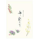 エヌビー社 TWF B5便箋 彩り 4730202
