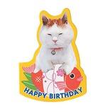 学研 かご猫 バースデー ミニカード (タイ) B20410