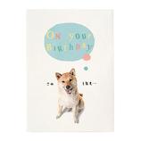 学研ステイフル 誕生日カード 動物 ポップアップカード B28119 玉のり犬