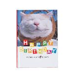 学研 BDメッセージブック かご猫 B10018
