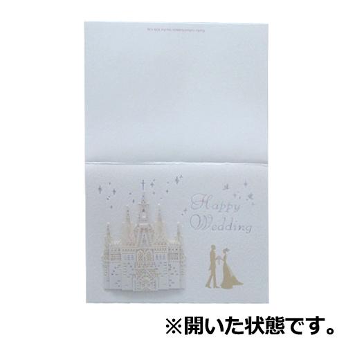 学研 WDレーザーアタッチカード E38138