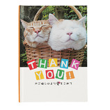 学研 KGNメッセージブック E10050 かご猫