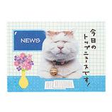 学研 KGN バースデーミニポップカード ニュース B20401