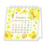 【2020年版・卓上】 クローズ・ピン naminami ミニ卓上カレンダー Aタイプ CL95518