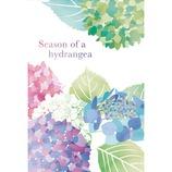 フロンティア はがき箋 HGS−316 紫陽花