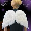 PA 天使の翼 M