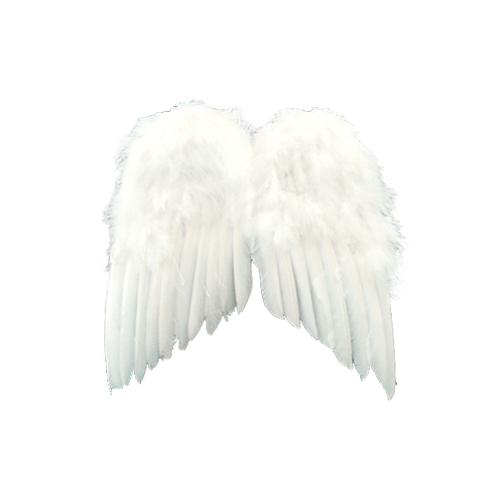 PA 天使の翼 S
