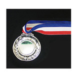 PA 銀メダル
