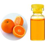 生活の木 有機オレンジスイート 3ml
