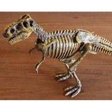 恐竜発掘セット(組立) ティラノサウルスレックス