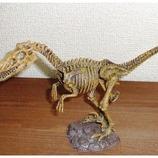 恐竜発掘セット(組立) ベロキラプトル