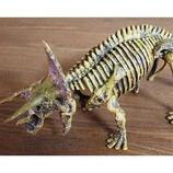 恐竜発掘セット(組立) トリケラトプス│パズル 立体パズル