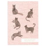 ホールマーク キャットグラフィー A5 ノートブック 739935 ピンク 猫のいぬまに