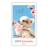 【2018年10月始まり】 日本ホールマーク もの思う犬 スリム マンスリー 744281 ブルー 月曜始まり