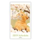 【2018年10月始まり】 日本ホールマーク つぶやく猫 スリム マンスリー 744298 オレンジ 月曜始まり