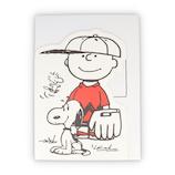 ホールマーク(Hallmark) 多目的カード BIGカード 779511 チャーリー・ブラウン