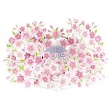 アートプリントジャパン 桜ポップアップカード 満開