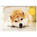 【2020年版・壁掛】アートプリントジャパン カレンダー 柴犬だいふく 1000109245