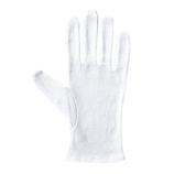 アトム 純綿スムス手袋 マチなし Lサイズ 12双組