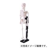 カワダ ナノブロック 人体骨格 NBM014