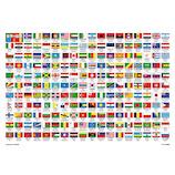 ビバリー 世界の国旗おぼえちゃおう! 80-025 80ピース