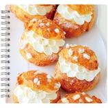 マルマン 東急ハンズOEM Instagrammerコラボ セプトスクエア A5変型ノート N539H10 sweets time (cream puff)