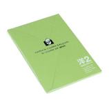 エトランジェ・ディ・コスタリカ 洋2封筒 画用紙 ENY2−G−38 キミドリ
