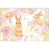 アクティブコーポレーション 春柄小動物と桜ポストカード PS−143h 桜/うさぎ