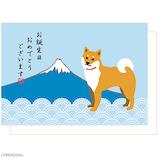 アクティブコーポレーション 柴田さんポップアップグリーティングカード B12−GT−231 誕生日│カード・ポストカード バースデー・誕生日カード