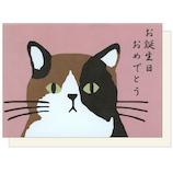 アクティブコーポレーション 三宅さんのバースデーカード GS-183 三毛猫の三宅さん│カード・ポストカード バースデー・誕生日カード