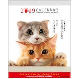 【2019年版・壁掛】アクティブコーポレーション 森田米雄 メッセージCAT 壁掛けカレンダー ACL−10