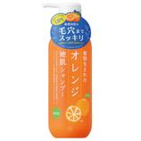 石澤研究所 植物生まれのオレンジ地肌シャンプーN