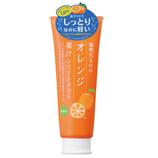 石澤研究所 植物生まれのオレンジ果汁トリートメントN