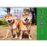 【2021年版・壁掛】 アートプリントジャパン 犬川柳カレンダー